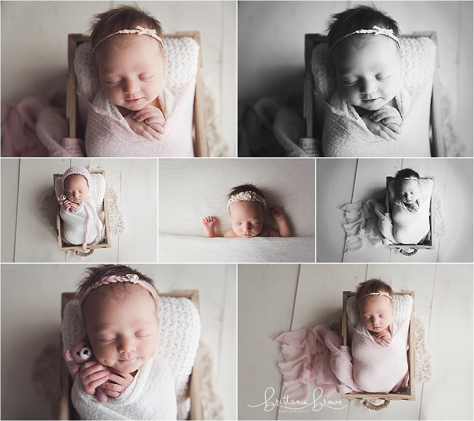 Mini Newborn Session Georgetown, KY Photographer
