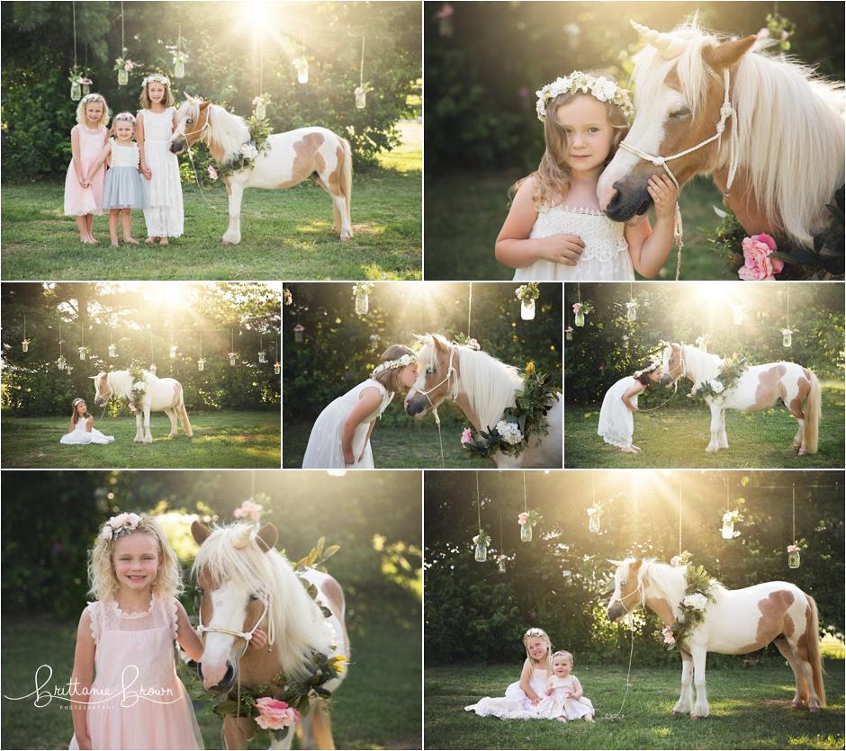 June 2018 Unicorn mini pony pictures in Ky